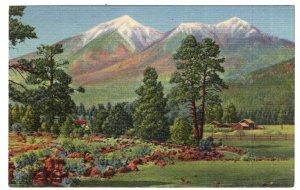 Flagstaff, Arizona, San Francisco Peaks