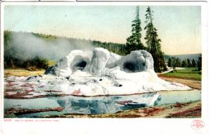 YELLOWSTONE, DETROIT PUBLISHING, GROTTO GEYSER, DIVIDED BACK