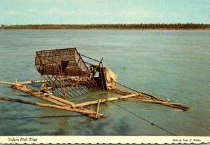 Alaska Yukon Fish Trap