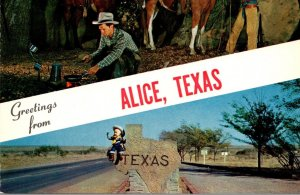 Texas Greetings From Alice