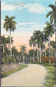 Cuba -palm tree lined country road, 1920s