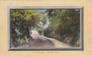BEXHILL ON SEA, Sussex, England, 1900-1910s; Chantry Lane, TUCK