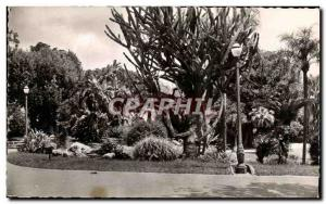 Old Postcard Monte Carlo Boulingrins Park