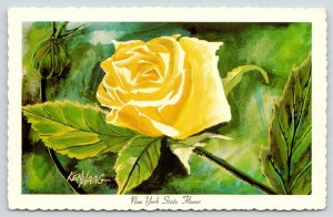 New York State Flower~Yellow Rose~1967 Artist Signed Postcard~Ken Haag