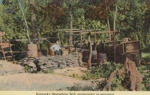 KENTUCKY Moonshine Still, preparatory to operation, 1900-10s