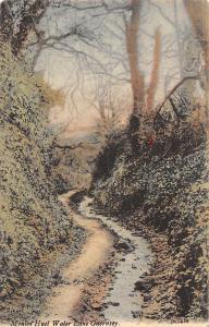 Moulin Huet Water Lane Guernsey, Small River, Creek, Forest, Nature