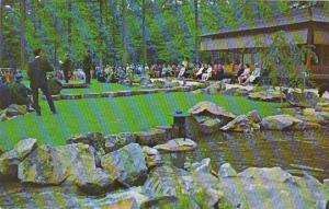Alabama Birmingham Japanese Gardens & Teahouse