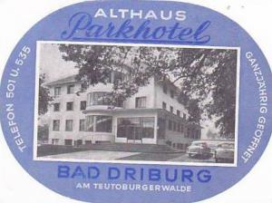 GERMANY BAD DRIBURG ALTHAUS PARKHOTEL VINTAGE LUGGAGE LABEL
