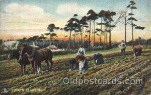 Potato planting Farming, Farm, Farmer  Unused