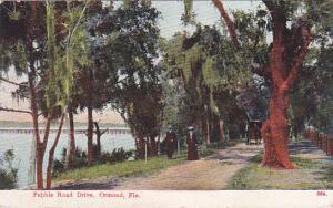ORMOND , Florida , PU-1910 ; Pebble Road Drive