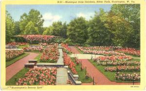 Municipal Rose Gardens, Ritter Park, Huntington, West Virginia, WV. Linen