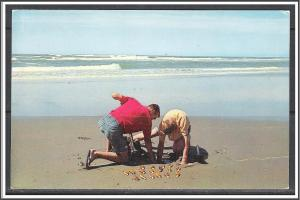 United States - Clam Digging Pacific Ocean Seacoast