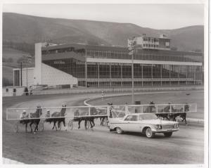 Harness Race Horses Following Pace car on track