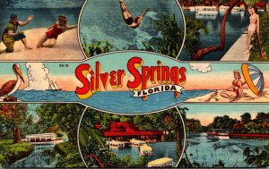 Florida Silver Springs Multi View