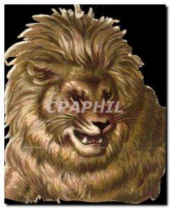 Chromo Lion