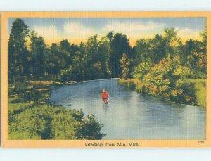Linen NATURE SCENE Mio - Near Grayling & Roscommon Michigan MI AD6762