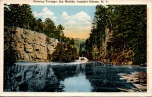 Coming Through Big Rapids, Ausable Chasm, NY Postcard F22