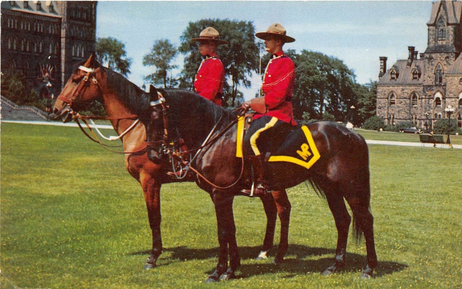 BG21408 the royal canadian mounted police horse types