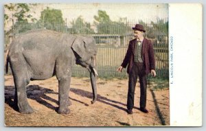 Chicago Illinois~Lincoln Park Zoo~Baby Elephant & Trainer~c1910 Postcard