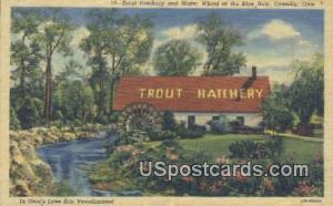 Trout Hatchery & Mill Pond, Blue Hole Castalia OH Unused