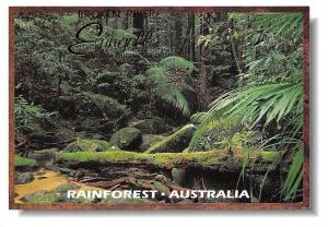 Australia Rainforest Broken River Murray Views