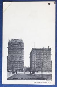Hotels Netherland & Savoy NY Illustrated Post Card Co 143