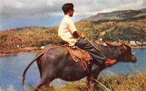 Native Carabo Guam Unused