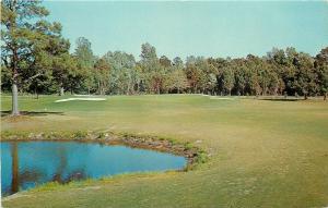 Myrtle Beach South Carolina~Myrtlewood Golf Course~7th Green~Intracoastal Hwy