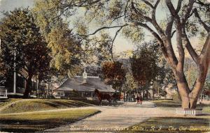 Providence Rhode Island elm tree Hunts Mills horse buggy antique pc Y10817