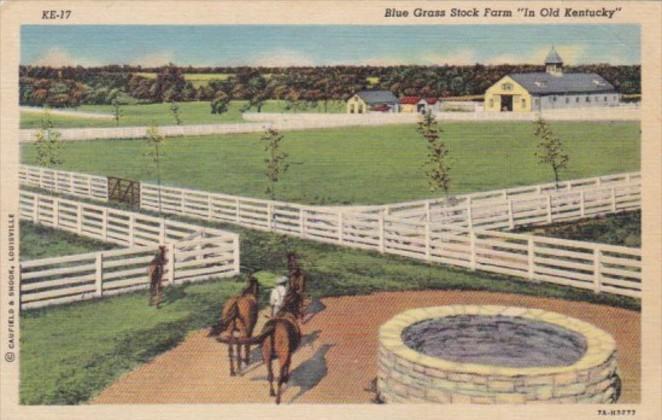 Kentucky Scene On A Blue Grass Horse Farm Curteich