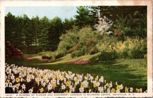 Asheville NC Biltmore Estates Gardens Postcard unused 1920s/30s