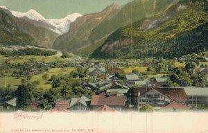 Switzerland Wilderswil 05.44