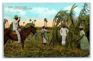 Postcard Cuba, Cutting Sugar Cane 1929 T8