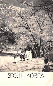 Seoul Korea Cherry Blossom Time 1936