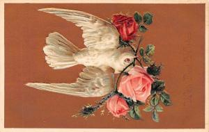 White Dove Dives With Pink Moss Red Roses~Bronze Back~Embossed~1908 Postcard