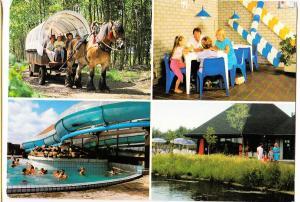 Netherlands, Vendorado Bungalowpark Loohorst PJ America, used Postcard
