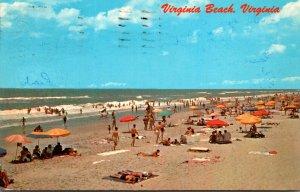 Virginia Virginia Beach Sunbathers Along The Beach 1972