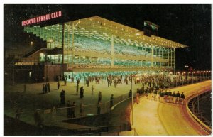 Postcard - Biscayne Kennel Club Greyhound Racing, Miami, Florida