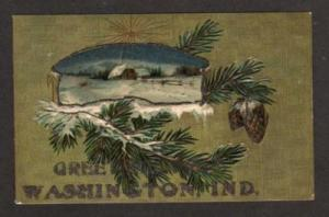 IN Greetings from WASHINGTON INDIANA Postcard Fir Tree
