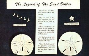 Vintage PostcardThe Legend Of The Sand Dollar Mellita Testudinata Holy Ghost
