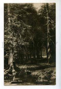 248965 Wildwood by KLEVER vintage Russian postcard