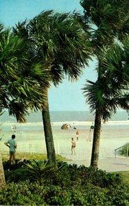 Georgia Sea Island Palm Trees and Ocean Seen From The Beach Club