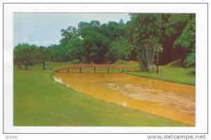 The Lake Garden, Kuala Lumpur, Malaya, 50-60s
