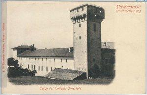 49715   CARTOLINA d'Epoca - FIRENZE provincia : VALLOMBROSA