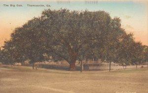 LPG20 Thomasville Georgia Big Oak Tree  Hand Colored  Albertype Postcard