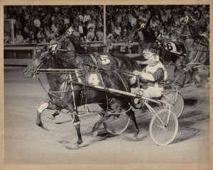 ROOSEVELT Raceway, harness Horse Racing, SOMETHING SUPERB winner, August 4th