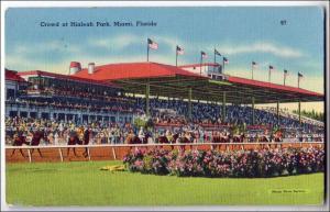 Crowd at Hialeah Park, Miami Fl