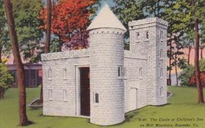 The Castle At Children's Zoo On Mill Mountain Roanoke Virginia 1939