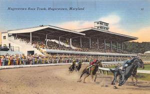 Hagerstown Race Track Horse Racing, Trotter, Trotters, Postcard Unused