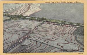 Arkansas Stuttgart Aerial View Of Rice Fields Curteich